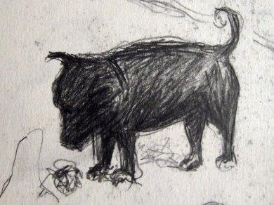 Dog with stone